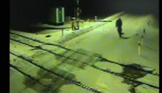 Czosnówka: Wprowadził psa pod pociąg