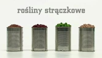 Czy owoce i warzywa w puszce są zdrowe?
