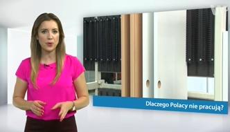 #dziejesiewbiznesie: Dlaczego Polacy nie pracują?