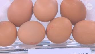 Po czym poznać świeżość jajek?