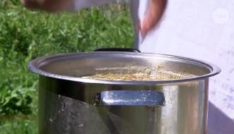 Jak zrobić idealną zupę chrzanową