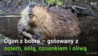 Zapomniane smaki kuchni polskiej. Kiedyś się nimi zajadaliśmy