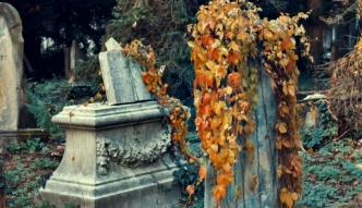 Historia starego cmentarza żydowskiego we Wrocławiu [Łowcy Przygód]