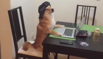 """Psy też umieją w """"Mannequin Challenge"""""""