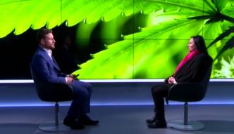 """Medyczna marihuana w Polsce? """"Politycy mają krew na rękach"""""""