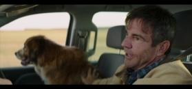 """""""Był sobie pies"""" - fragment filmu"""