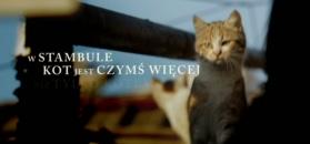 ''Kedi - sekretne życie kotów'' - zwiastun