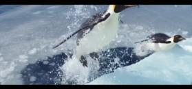 """""""Marsz pingwinów 2: Przygoda na krańcu świata"""" - zwiastun"""