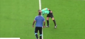 #dziejesiewsporcie: Szalony kibic strzelił gola!