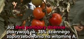 Pomidory. Oto ich cudowne właściwości