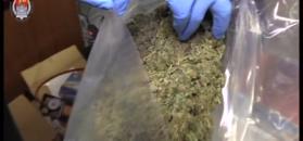 Udaremniono przemyt marihuany wartej prawie 3 mln zł
