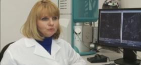 Polskie badaczki chcą leczyć raka za pomocą dżdżownic