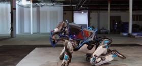 Robot akrobata