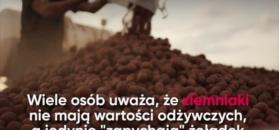 Czego nie wiesz o ziemniakach