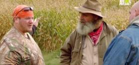 Ogar piekielny na polu kukurydzy?