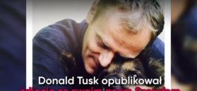 Politycy ze zwierzętami. Wystarczyło jedno zdjęcie Tuska