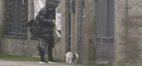 Margaret przygotowuje się do Sylwestra. Oddała psa do hotelu dla zwierząt