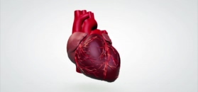 Jakie choroby może sugerować ból w klatce piersiowej?