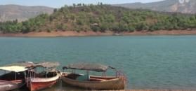 Mięsożerne żółwie oczyszczą Ganges z ludzkich zwłok