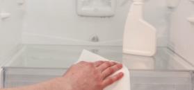 Sprzątanie lodówki bez chemii