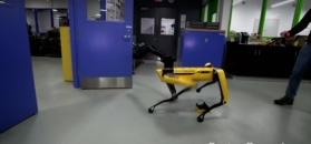 Co się stanie, gdy zaczniesz przeszkadzać robotowi, który ma otworzyć drzwi