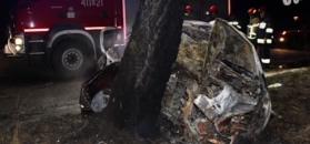 Auto uderzyło w drzewo i spaliło się. Zginęło 5 osób