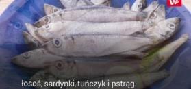 Jesz ryby raz w tygodniu? Zapobiegasz poważnej chorobie