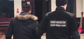 Irakijczyk dostał się do Polski po ściętym drzewie