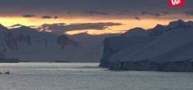Alarmujące sygnały z Antarktydy. Poziom wód urośnie szybciej?