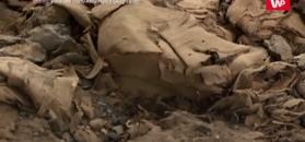 Niespodziewane odkrycie w sarkofagu