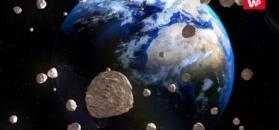 Nieodkryte asteroidy wokół Ziemi. NASA musi zacząć działać