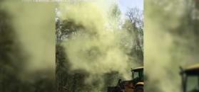 Niewiarygodne, ile pyłu jest w drzewie