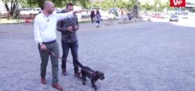 Jan Śpiewak: Warszawa nie może być parkingiem dla Mazowsza