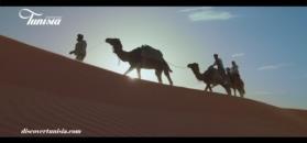 Sahara - Tunezja - warto ją odkryć, nie tylko odwiedzić.