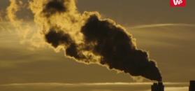 Powietrze, które zabija. Naukowcy policzyli, ile ludzi umiera rocznie