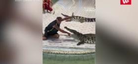 Krokodyl ugryzł mężczyznę w rękę