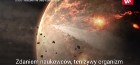 Początki życia na Ziemi
