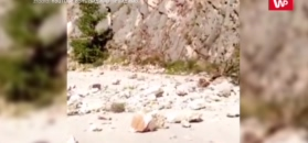 Trzęsienie ziemi w Grecji. 5 stopni w skali Richtera