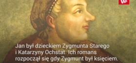 Król Polski i jego bękart. Jak Zygmunt Stary zadbał o syna