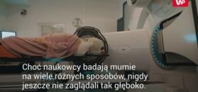 Prześwietili rękę mumii promieniami X. Naukowcy zachwyceni efektami
