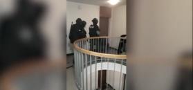Gdańsk. Rozbito zorganizowaną grupę narkotykową. Zabezpieczono 6 milionów porcji amfetaminy