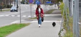 Rusin w białych kozakach biegnie do jaguara Kujawy