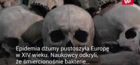 Początki Czarnej Śmierci
