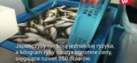 Zmutowane ryby poważnie niepokoją rybaków. Sytuacja jest coraz gorsza
