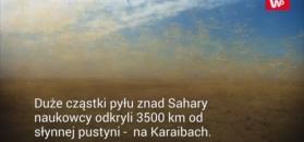 Pył znad Sahary zaskoczył naukowców