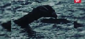 Nessie. Kolejny dowód na istnienie legendarnego zwierzęcia?