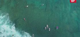 Oceany zmienią kolor