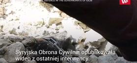 Szczeniak pod gruzami. Nagranie z akcji ratunkowej