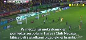 #dziejesiewsporcie: Piękny gol Gignaca w lidze meksykańskiej