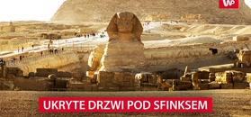 Piramidy i Sfinksa łączy tunel. Ekspert twierdzi, że ma dowód